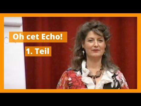 Oh Cet Echo! Vortrag (1.Teil) von Jenison Thomkins auf dem DVNLP-Kongress 2012 in Köln