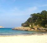 4D-Typologie auf Mallorca